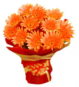 Bunch Of Orange Gerbera: Arhedi Arhedi, Bhopal