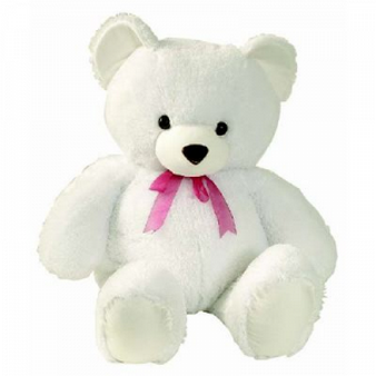 Teddy Bear 1.5 Ft: Miss-you  Bhopal