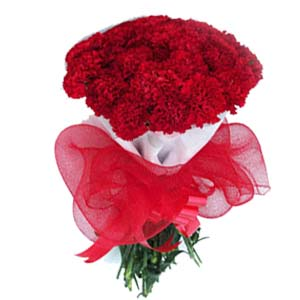 carnations-bunch-red-raksha bandhan-Bhopal