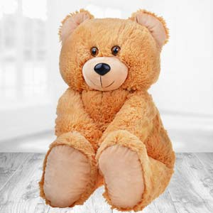 Teddy Bear 2 Feet: Gift Misrod,  Bhopal