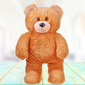 3 Feet Teddy Bear: Teddy Day Kalyan Pur,  Bhopal