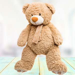 Big Teddy Bear (5 feet) Soft Toys Lalghati, Bhopal