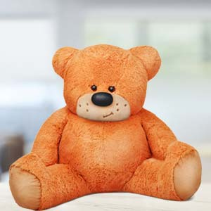 5 Feet Sitting Teddy Bear: Teddy Day Meerpur,  Bhopal