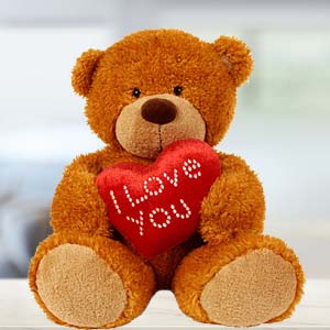 I Love You Teddy: Gifts Kalyan Pur,  Bhopal
