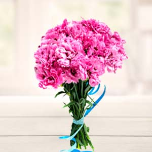Carnations Bunch: Gift Dobra,  Bhopal