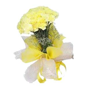 Yellow Carnation: Gift Karond,  Bhopal