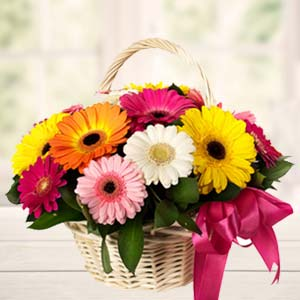 Handle Basket Of Mix Gerbera: Mothers day Bda Colony,  Bhopal