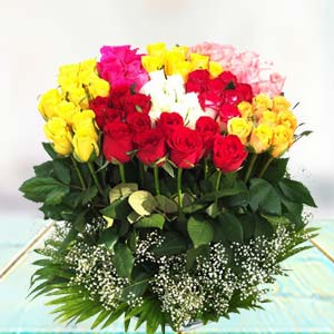 70 Mixed Roses: Gift Bda Colony,  Bhopal