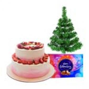 Xmas Chocolate Gifts Combos: Christmas  Bhopal