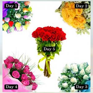5 Roses Bunch Of Days Serenade: Hug Day Kal Khedi,  Bhopal
